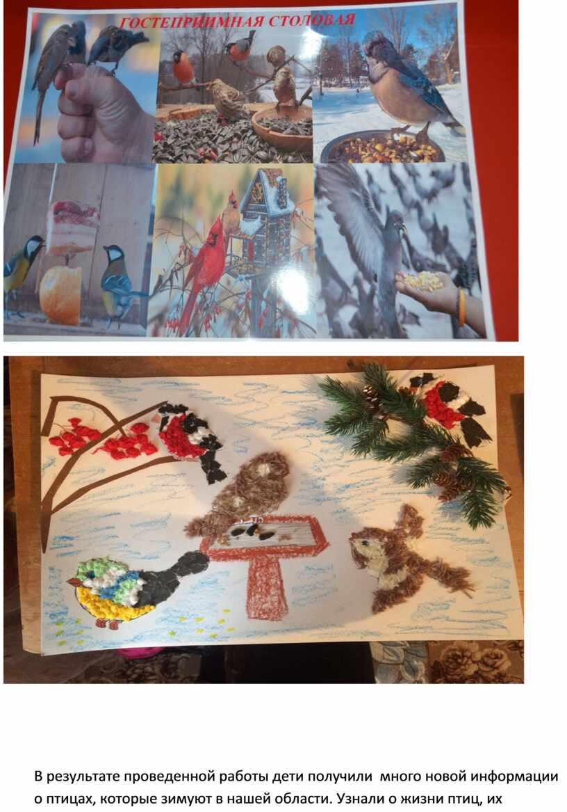 В результате проведенной работы дети получили много новой информации о птицах, которые зимуют в нашей области