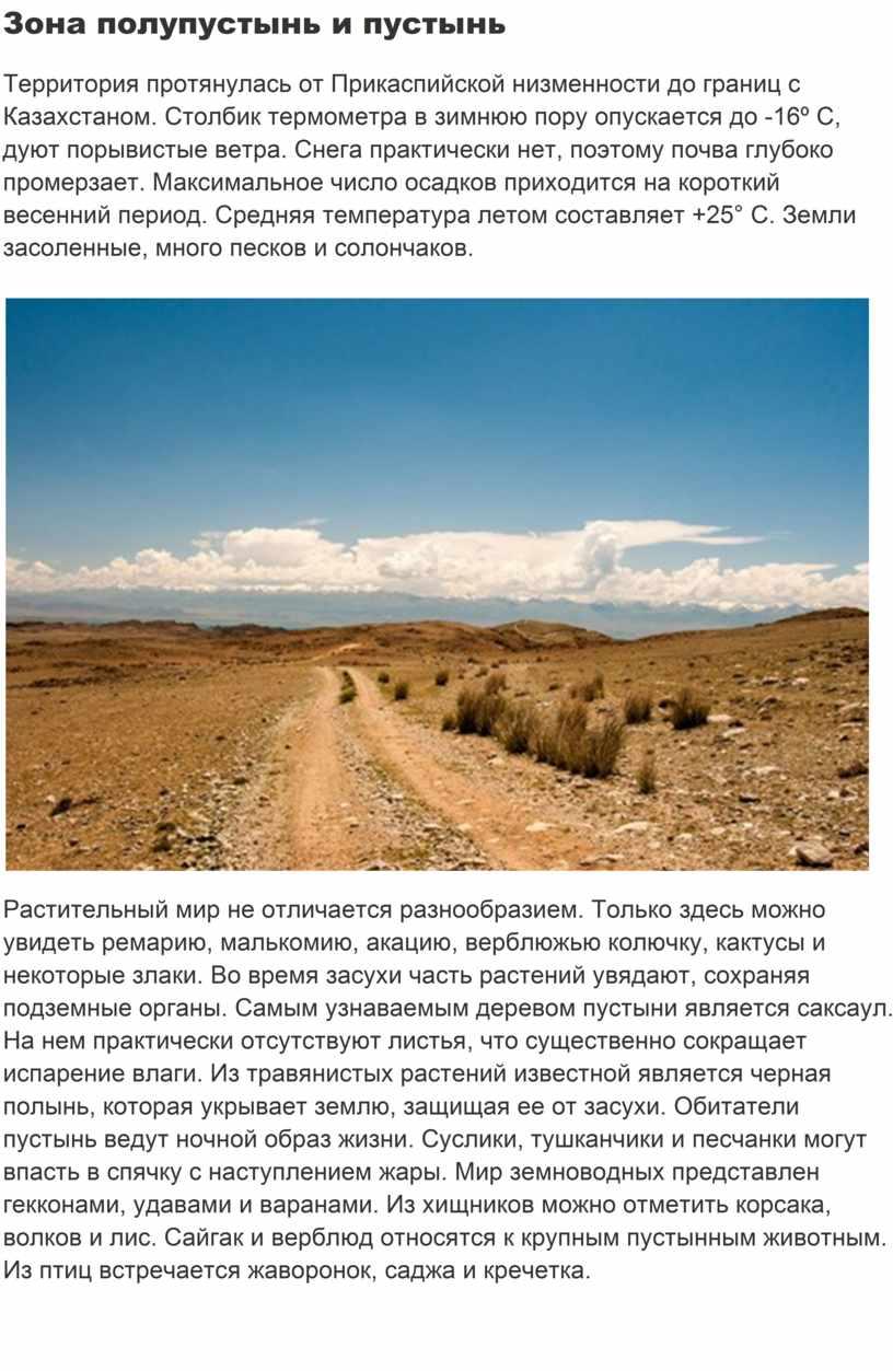 Зона полупустынь и пустынь Территория протянулась от