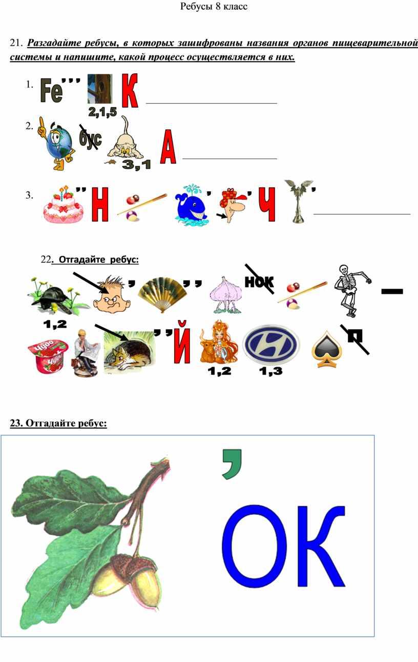 Ребусы 8 класс 21. Разгадайте ребусы, в которых зашифрованы названия органов пищеварительной системы и напишите, какой процесс осуществляется в них