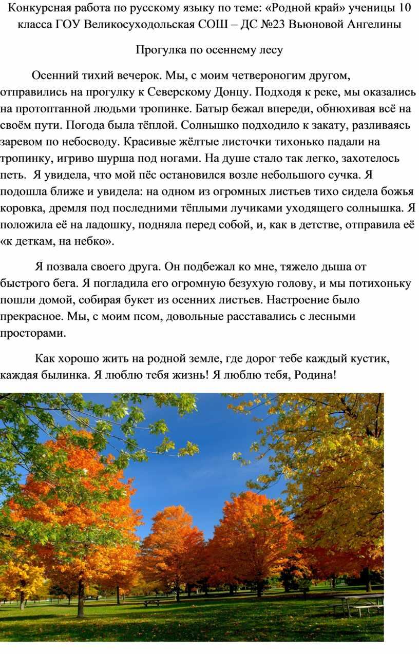 Конкурсная работа по русскому языку по теме: «Родной край» ученицы 10 класса