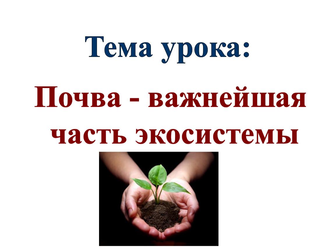Тема урока: Почва - важнейшая часть экосистемы