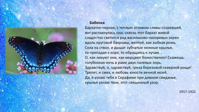 Бабочка Бархатно-черная, с теплым отливом сливы созревшей, вот распахнулась она; сквозь этот бархат живой сладостно светится ряд васильково-лазоревых зерен вдоль круговой бахромы, желтой, как зыбкая…