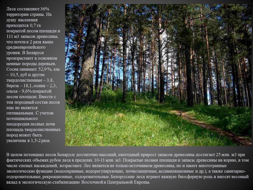 Леса составляют 36% территории страны