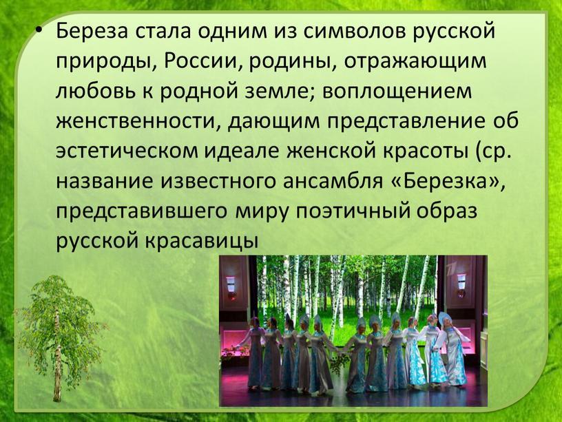 Береза стала одним из символов русской природы,