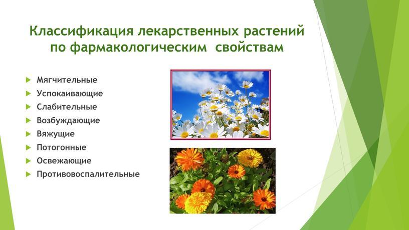 Классификация лекарственных растений по фармакологическим свойствам