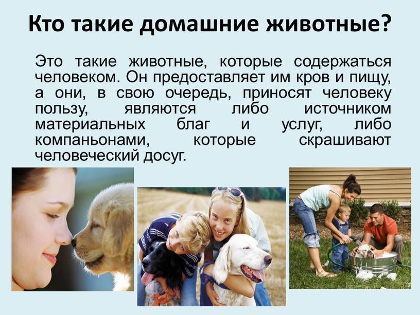 Кто такие домашние животные? Это такие животные, которые содержаться человеком
