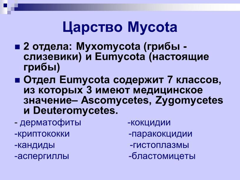 Царство Mycota 2 отдела: Myxomycota (грибы - слизевики) и
