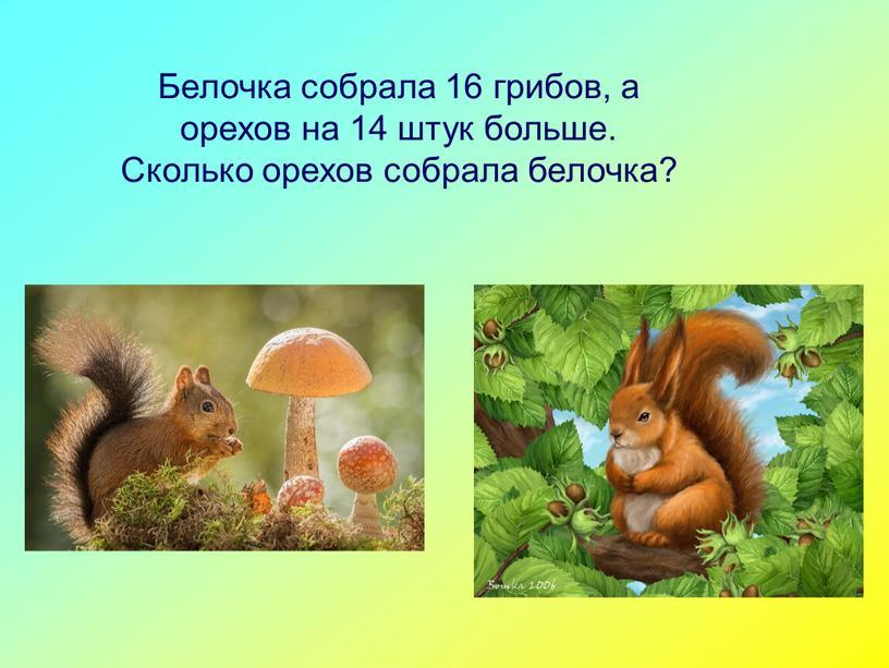 Белочка собрала 16 грибов, а орехов на 14 штук больше