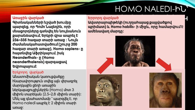 Homo sapiens- ը հայտնվեց Աֆրիկայում, իսկ