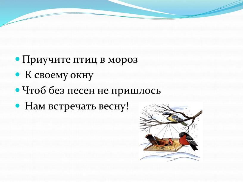 Приучите птиц в мороз К своему окну