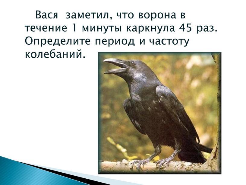 Вася заметил, что ворона в течение 1 минуты каркнула 45 раз