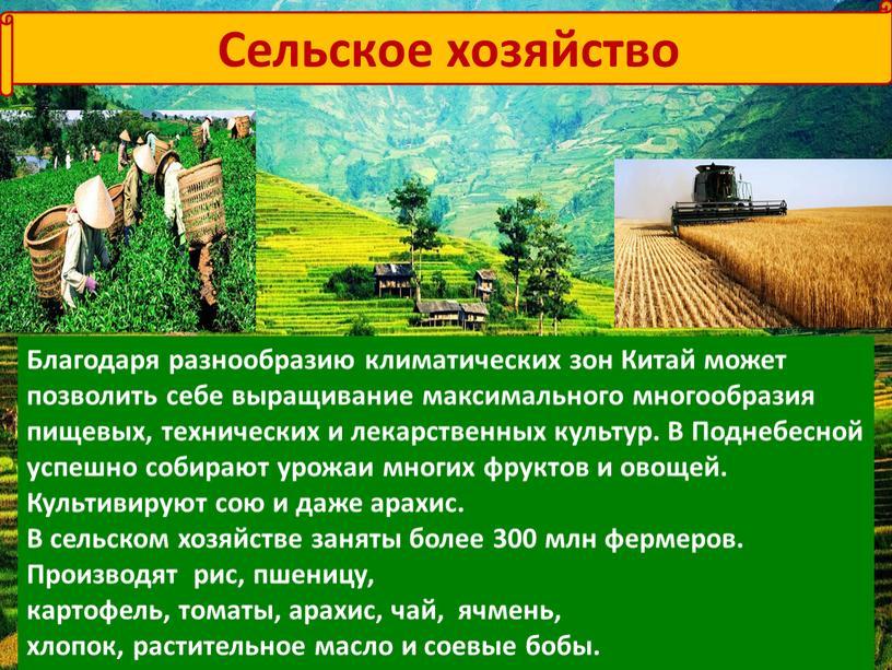 Сельское хозяйство Благодаря разнообразию климатических зон