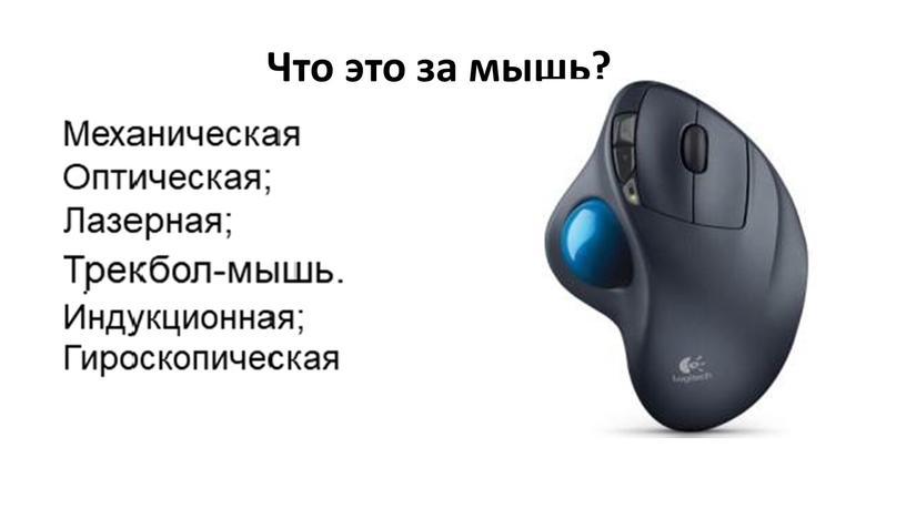 Что это за мышь?