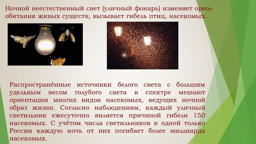 Ночной неестественный свет (уличный фонарь) изменяет ореол обитания живых существ, вызывает гибель птиц, насекомых