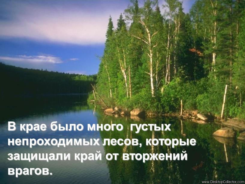 В крае было много густых непроходимых лесов, которые защищали край от вторжений врагов