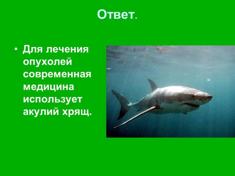 Ответ . Для лечения опухолей современная медицина использует акулий хрящ