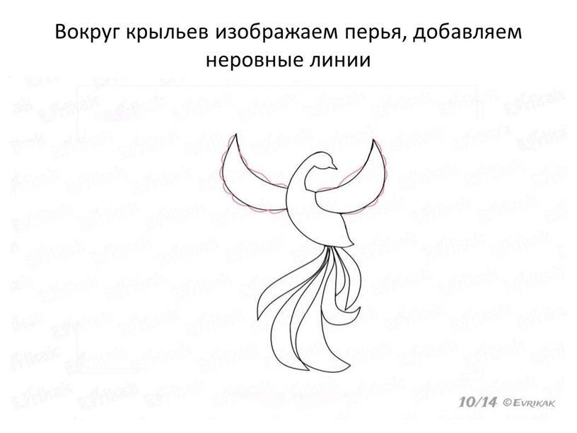 Вокруг крыльев изображаем перья, добавляем неровные линии