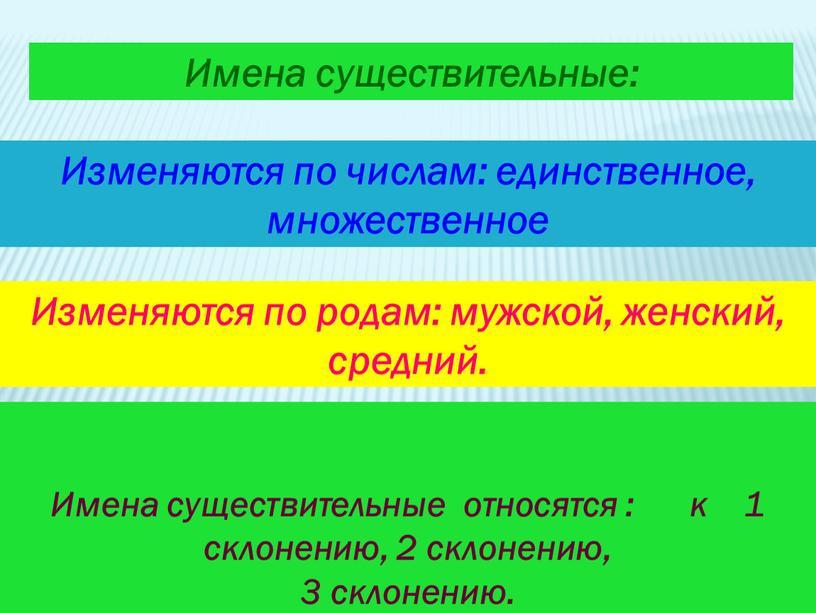 Имена существительные относятся : к 1 склонению, 2 склонению, 3 склонению