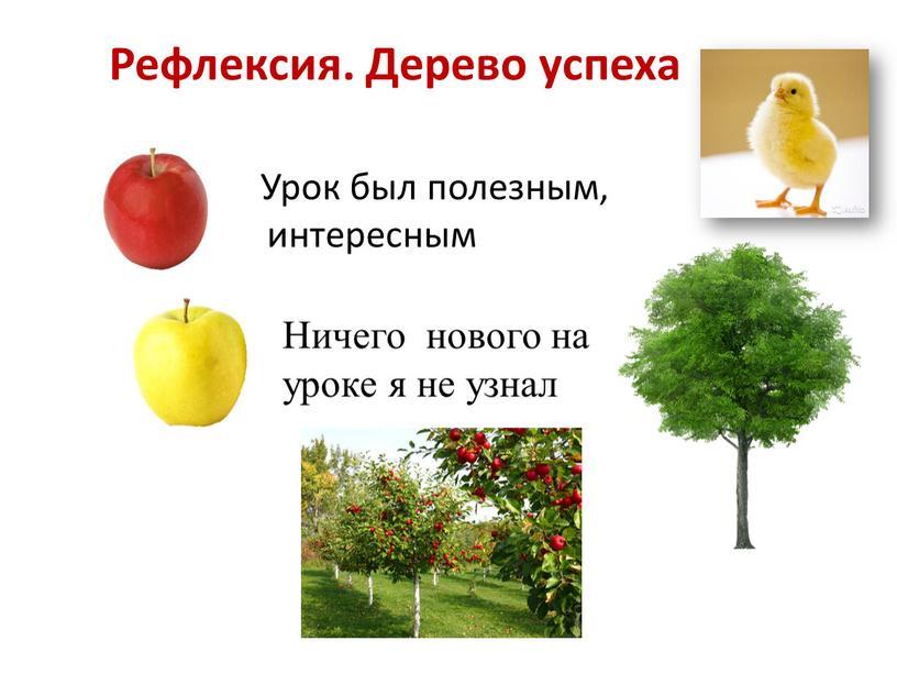 Рефлексия. Дерево успеха Урок был полезным, интересным