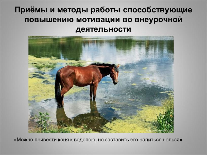 Приёмы и методы работы способствующие повышению мотивации во внеурочной деятельности «Можно привести коня к водопою, но заставить его напиться нельзя»