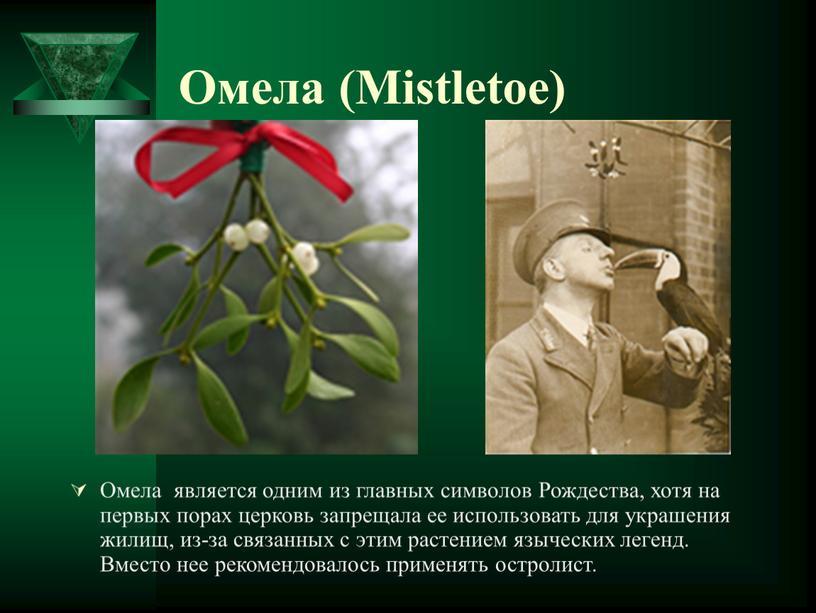 Омела (Mistletoe) Омела является одним из главных символов