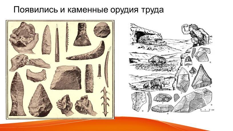 Появились и каменные орудия труда