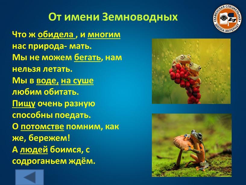От имени Земноводных Что ж обидела , и многим нас природа- мать