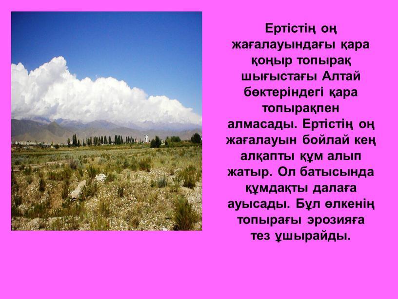 Ертістің оң жағалауындағы қара қоңыр топырақ шығыстағы