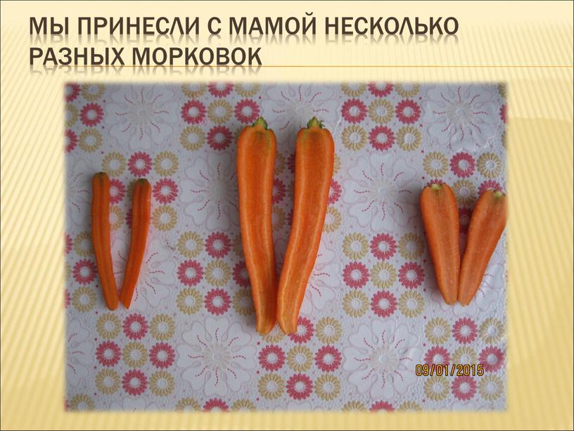 Мы принесли с мамой несколько разных морковок