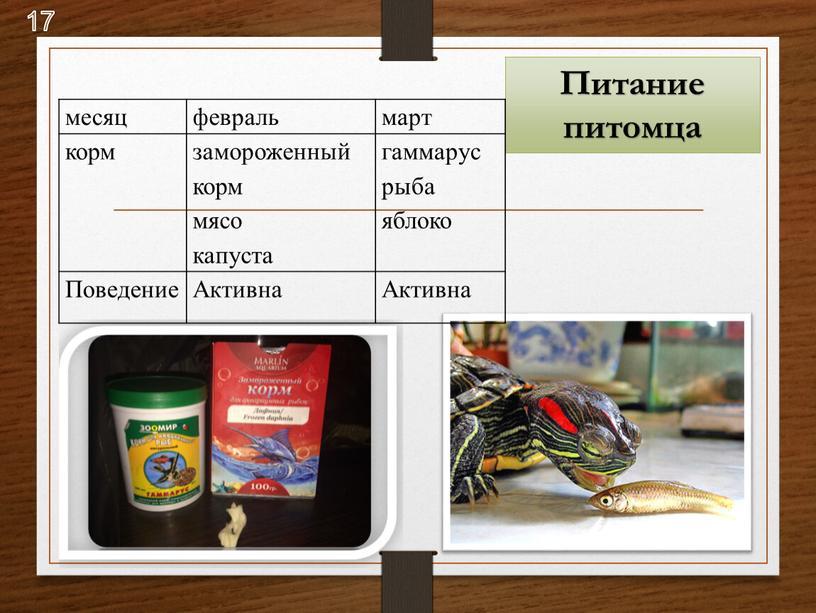 Питание питомца месяц февраль март корм замороженный корм мясо капуста гаммарус рыба яблоко