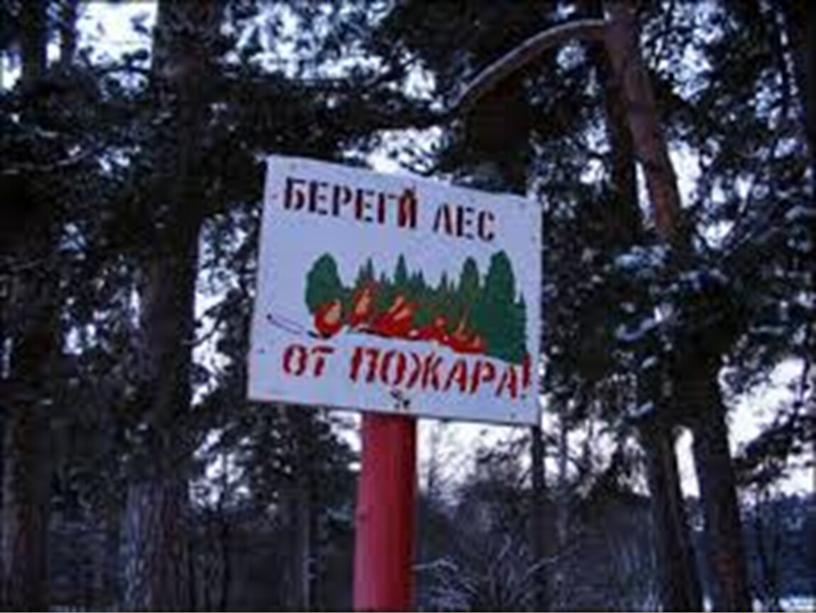 При обнаружении природного пожара постарайтесь ликвидировать очаг возгорания собственными силами; если это не удалось сделать, быстро покиньте опасную зону