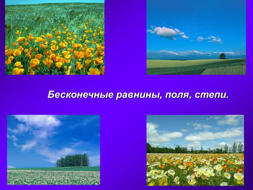 Бесконечные равнины, поля, степи