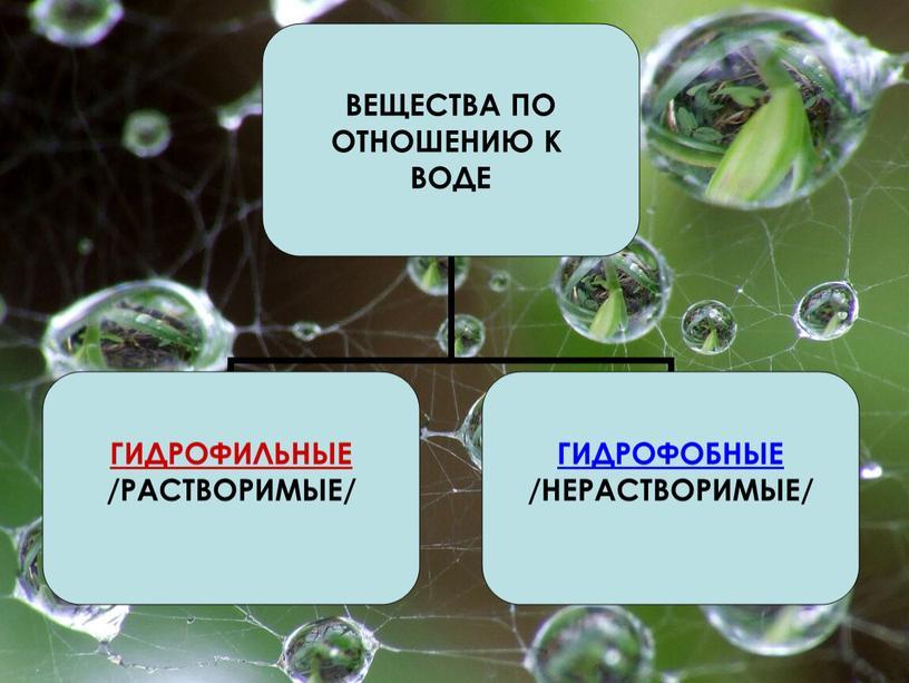 """Презентация по биологии на тему""""Химическая организация клетки"""" (9 класс общая биология)."""
