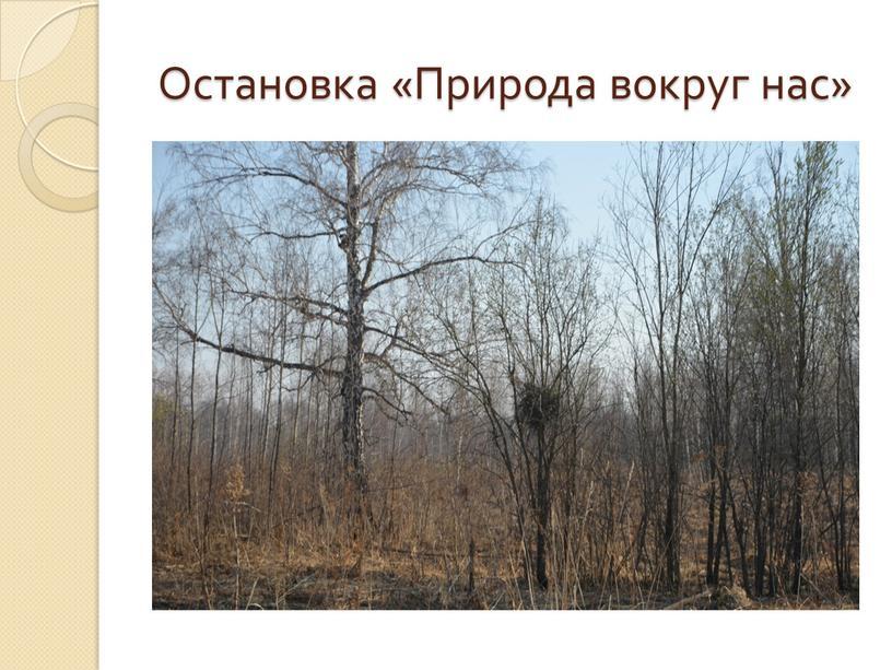 Остановка «Природа вокруг нас»