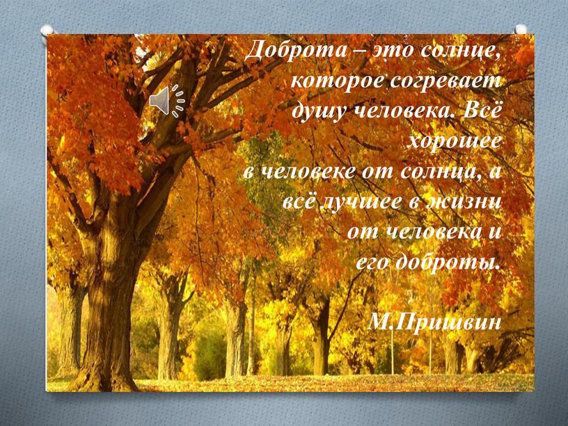 Доброта – это солнце, которое согревает душу человека