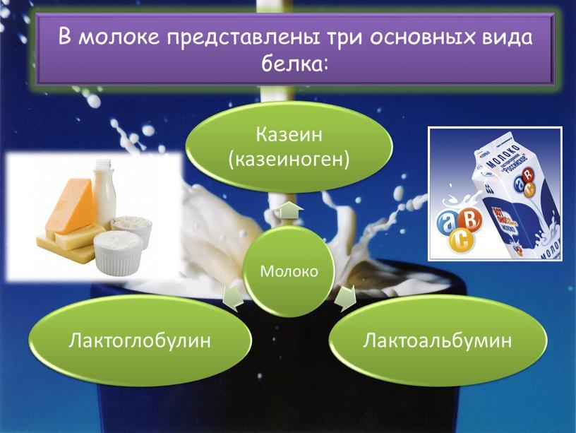 В молоке представлены три основных вида белка:
