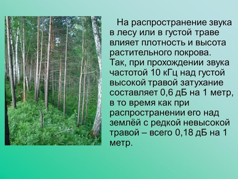 На распространение звука в лесу или в густой траве влияет плотность и высота растительного покрова