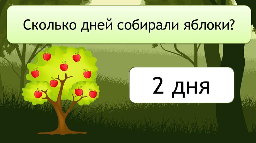 Сколько дней собирали яблоки? 2 дня