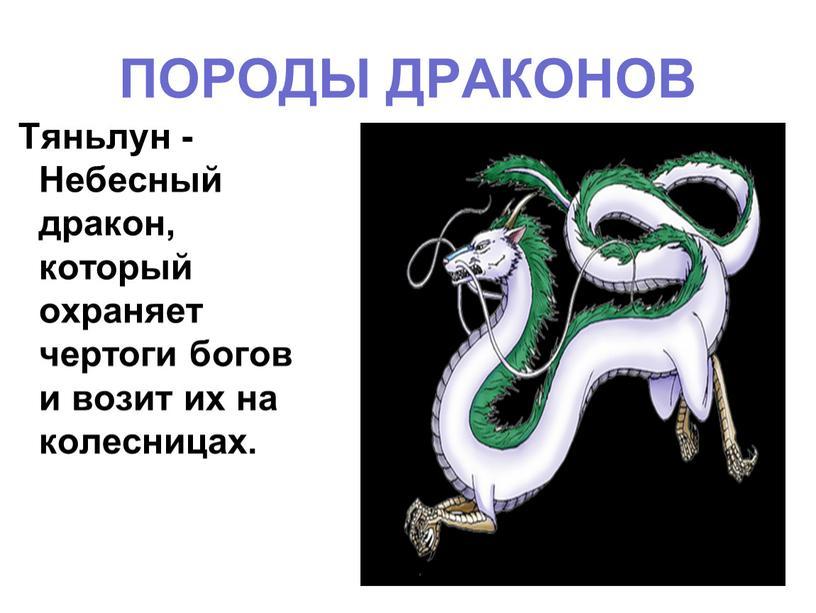 ПОРОДЫ ДРАКОНОВ Тяньлун - Небесный дракон, который охраняет чертоги богов и возит их на колесницах