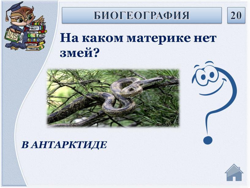 В АНТАРКТИДЕ На каком материке нет змей?