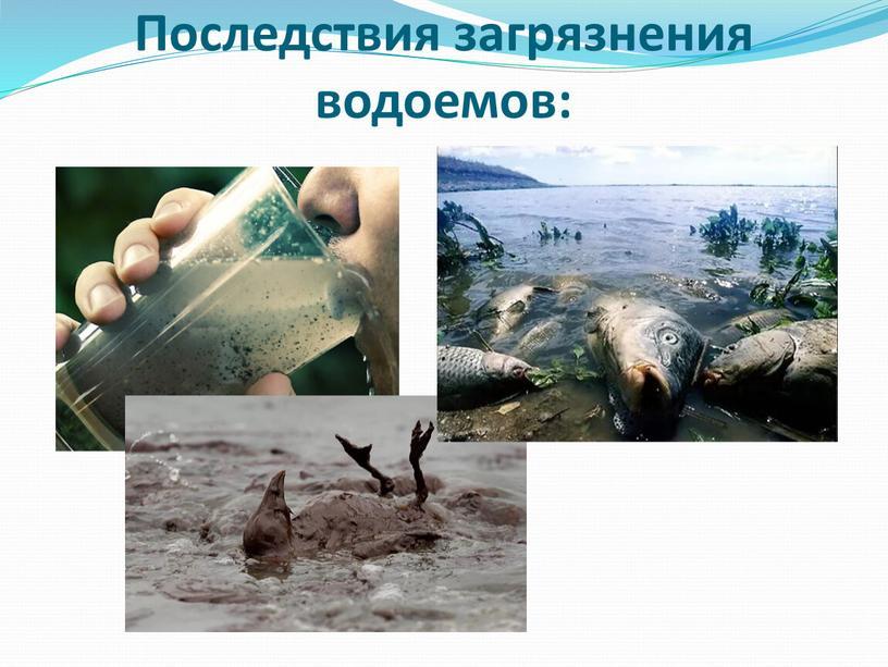 Последствия загрязнения водоемов: