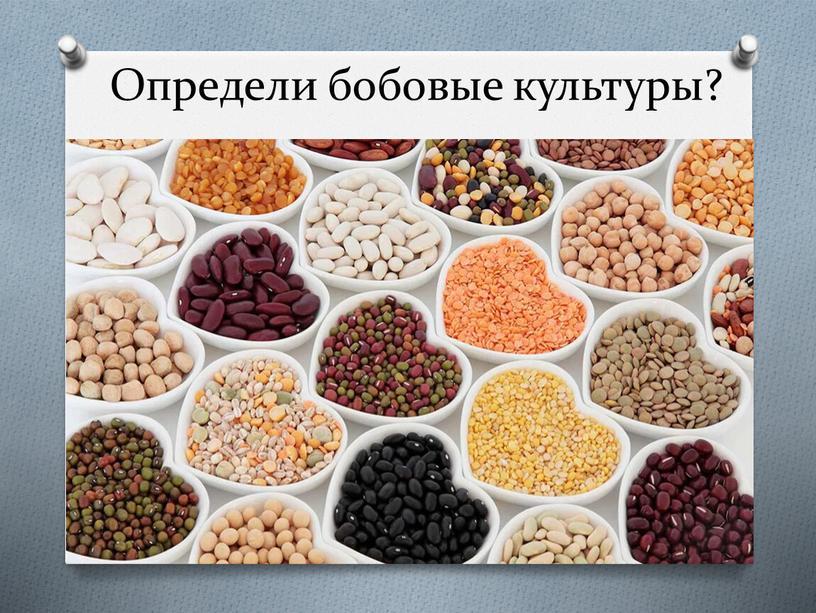 Определи бобовые культуры?