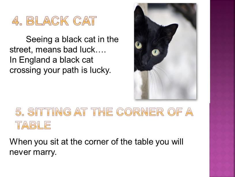 Black cat Seeing a black cat in the street, means bad luck…