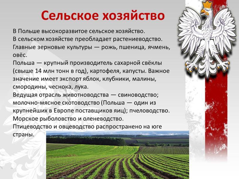 Сельское хозяйство В Польше высокоразвитое сельское хозяйство