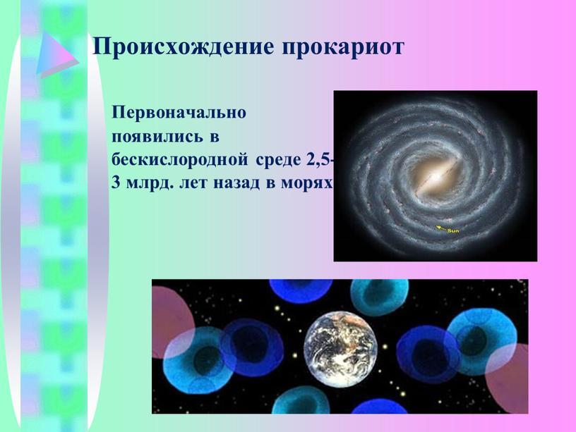 Происхождение прокариот Первоначально появились в бескислородной среде 2,5-3 млрд