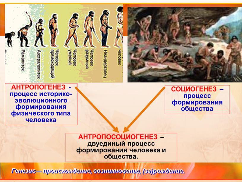 АНТРОПОГЕНЕЗ - процесс историко-эволюционного формирования физического типа человека
