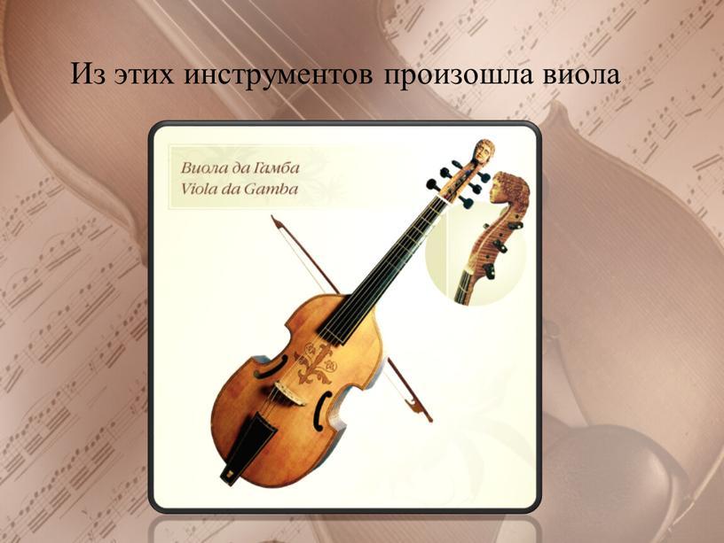Из этих инструментов произошла виола
