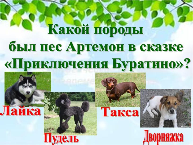 Какой породы был пес Артемон в сказке «Приключения