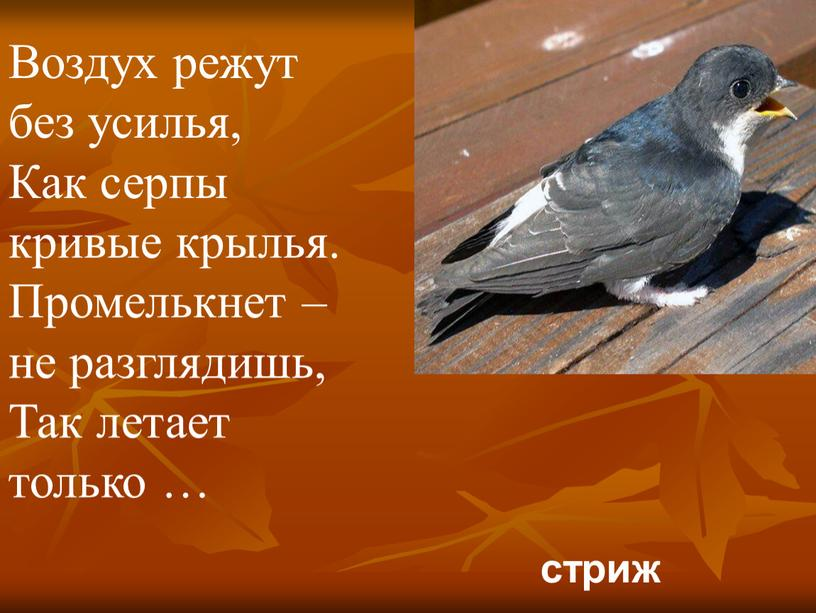 Воздух режут без усилья, Как серпы кривые крылья