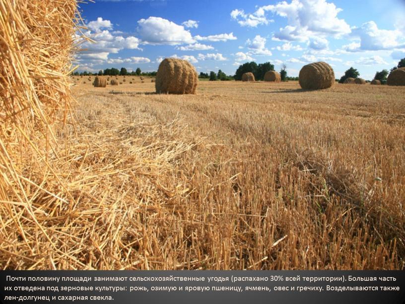 Почти половину площади занимают сельскохозяйственные угодья (распахано 30% всей территории)